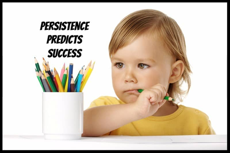 Persistence Predicts Success